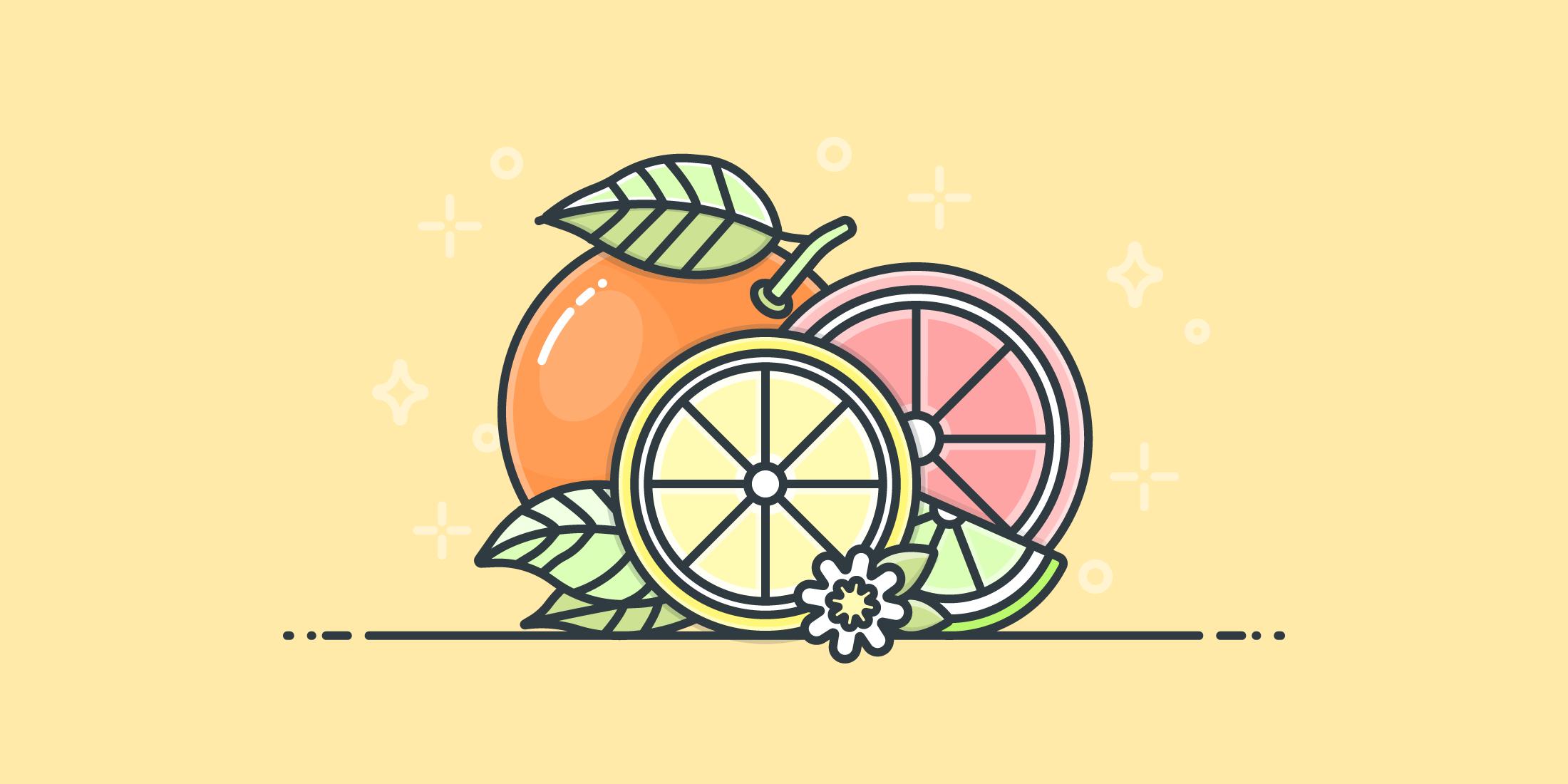 Illustration of citrus fruits